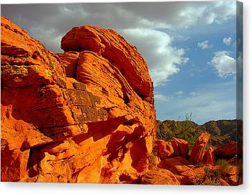 Valley Of Fire - Born To Be Wild Canvas Print by Christine Till