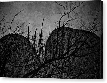 Valley Of Sticks Canvas Print by Empty Wall