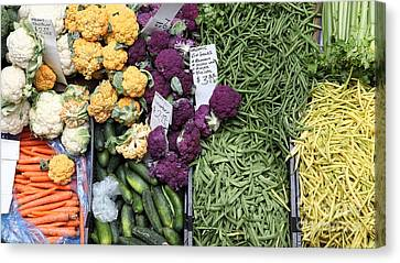Variety Of Fresh Vegetables - 5d17900-long Canvas Print by Wingsdomain Art and Photography