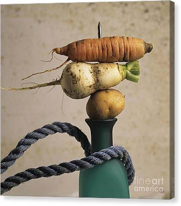 Variety Of Vegetables Canvas Print by Bernard Jaubert