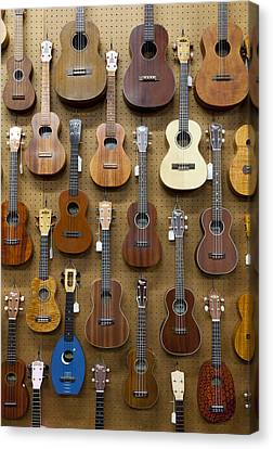 Various Guitars & Ukuleles Hanging From Wall Canvas Print by Lisa Romerein