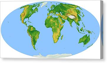 Vegetation Map -- Oval Projection Canvas Print by Cartesia