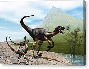 Velociraptor Offspring Beg Mother Canvas Print by Corey Ford