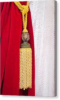 Velvet Curtain Canvas Print by Tom Gowanlock