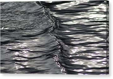 Velvet Ripple Canvas Print