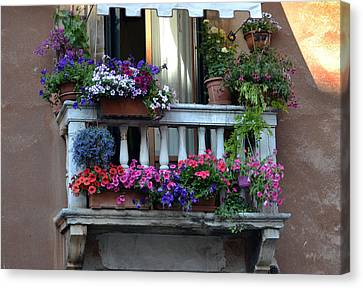 Venetian Balcony Canvas Print by Terence Davis