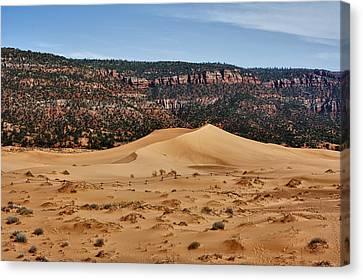 Vermilion Dunes Canvas Print by Stephen Campbell