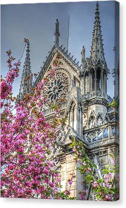 Canvas Print featuring the photograph Vibrant Cathedral by Jennifer Ancker