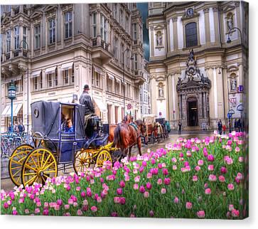 Vienna Fiaker Peterskirche Tulips Canvas Print by Juli Scalzi
