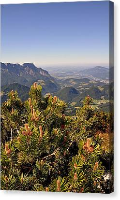 Canvas Print featuring the photograph View From Eagles Nest by Rick Frost