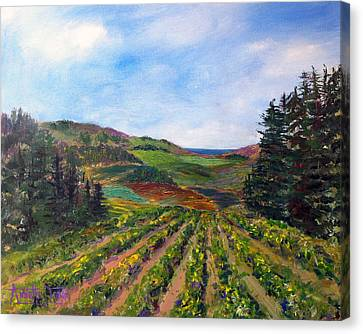 View From Soquel Vineyards Canvas Print by Annette Dion McGowan