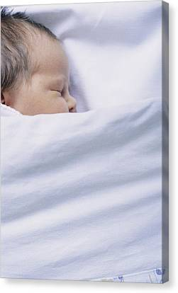 View Of A Premature Baby Asleep In A Cot Canvas Print by Mauro Fermariello