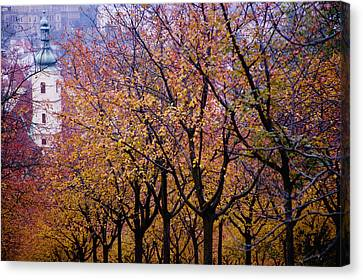 View Of Prague From Mala Strana Park Canvas Print by Axiom Photographic