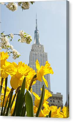 Views Of The Empire State Building And Canvas Print by Axiom Photographic