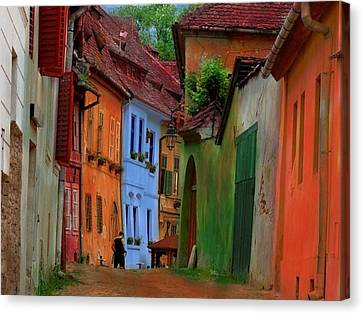 Village Viuw Canvas Print by Miu Dan Popa