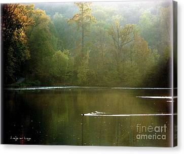 Ville D'avray   Canvas Print