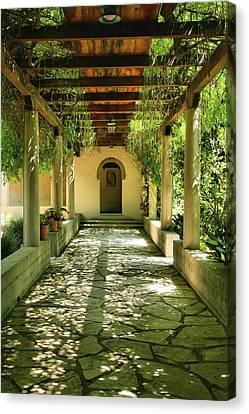 Vine Covered Walkway Canvas Print by Steven Ainsworth