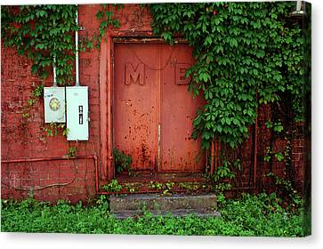 Vines Block The Door Canvas Print by Paul Mashburn