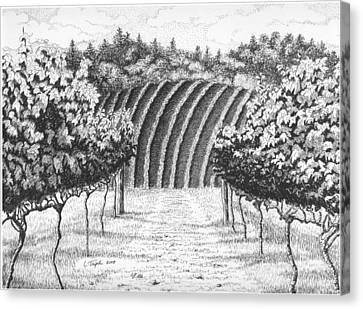Vineyard Canvas Print by Lawrence Tripoli