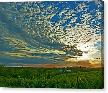 Canvas Print featuring the photograph Vineyard Sunset I by William Fields
