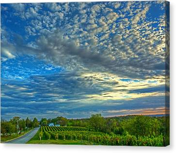 Canvas Print featuring the photograph Vineyard Sunset II by William Fields