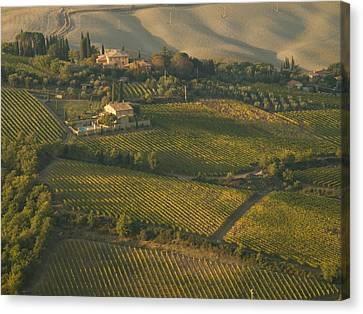 Brunello Canvas Print - Vineyards Surround Villas by Michael S. Lewis