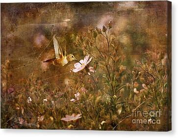 Vintage Beauty In Nature  Canvas Print by Susan Gary