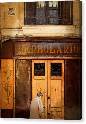 Vintage Facade In Madrid Canvas Print by Perry Van Munster