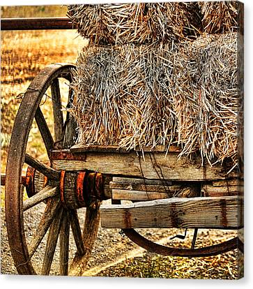 Vintage Hay Wagon Canvas Print by Bonnie Bruno