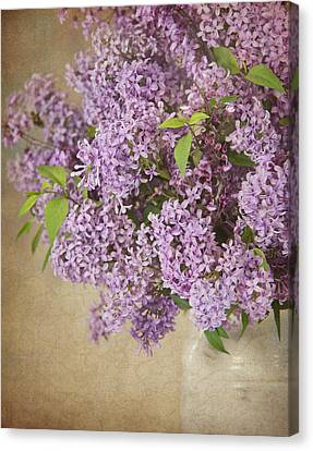 Canvas Print featuring the photograph Vintage Lilac by Cheryl Davis