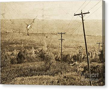 Vintage View Of Ontario Fields Canvas Print by Traci Cottingham