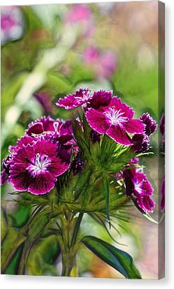 Violet Floral Imressions Canvas Print by Bill Tiepelman