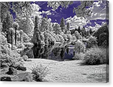 Violet Lake - Infrared Photography Canvas Print by Steven Cragg
