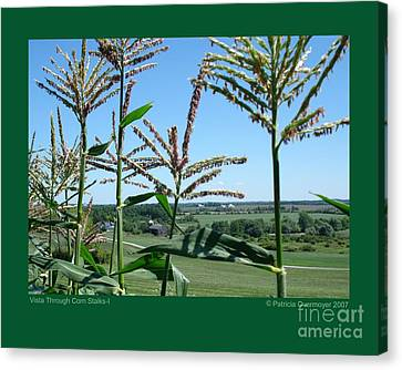 Vista Through Corn Stalks-i Canvas Print by Patricia Overmoyer