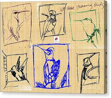 Wa State Humming Birds Canvas Print