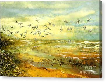Wadden Sea Canvas Print by Anne Weirich