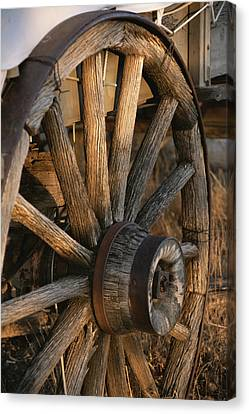 Conestoga Canvas Print - Wagon Wheel On Covered Wagon At Bar 10 by Todd Gipstein