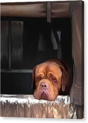 Puppy Canvas Print - Waiting On A Friend by Snake Jagger