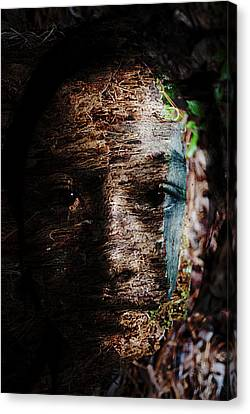 Waldgeist Canvas Print by Christopher Gaston