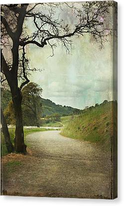 Walk Of Life Canvas Print by Laurie Search