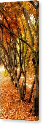 Canvas Print featuring the painting Walk With Me by Susan Fisher