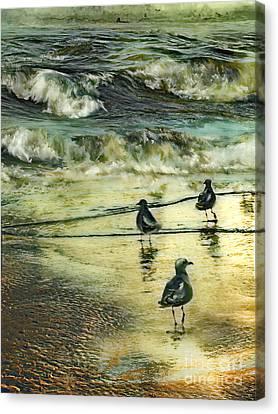 Walking At Beach Canvas Print by Anne Weirich