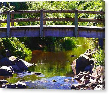 Walking Bridge At Otter Crest Canvas Print by Glenna McRae