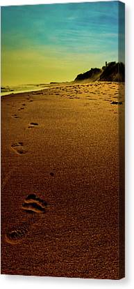 Walking Off Into The Sunset Canvas Print by David Hahn