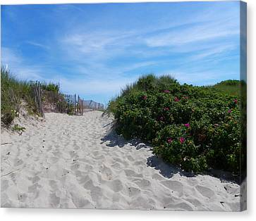 Walking Through The Dunes Canvas Print
