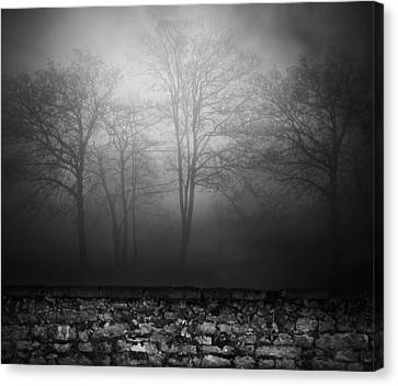 Wall Of Sisters  Canvas Print by Empty Wall