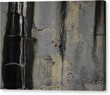 Wall Texture Number 5 Canvas Print by Carol Leigh