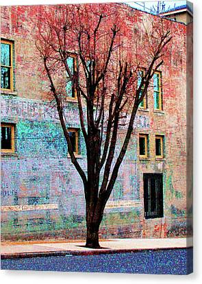 Canvas Print featuring the photograph Wall Wth Secrets by Lizi Beard-Ward