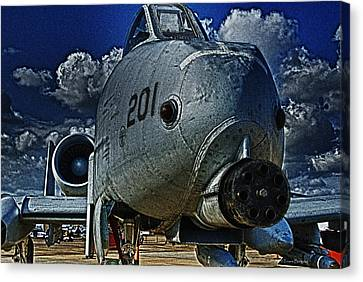 Canvas Print featuring the photograph Warthog by Travis Burgess