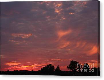 Warwickshire Sunset Canvas Print by Linsey Williams